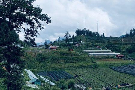 Bán đất phường ô quý hồ thị xã sapa
